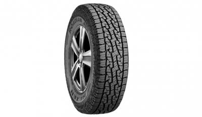 Roadian AT Pro RA8 Tires